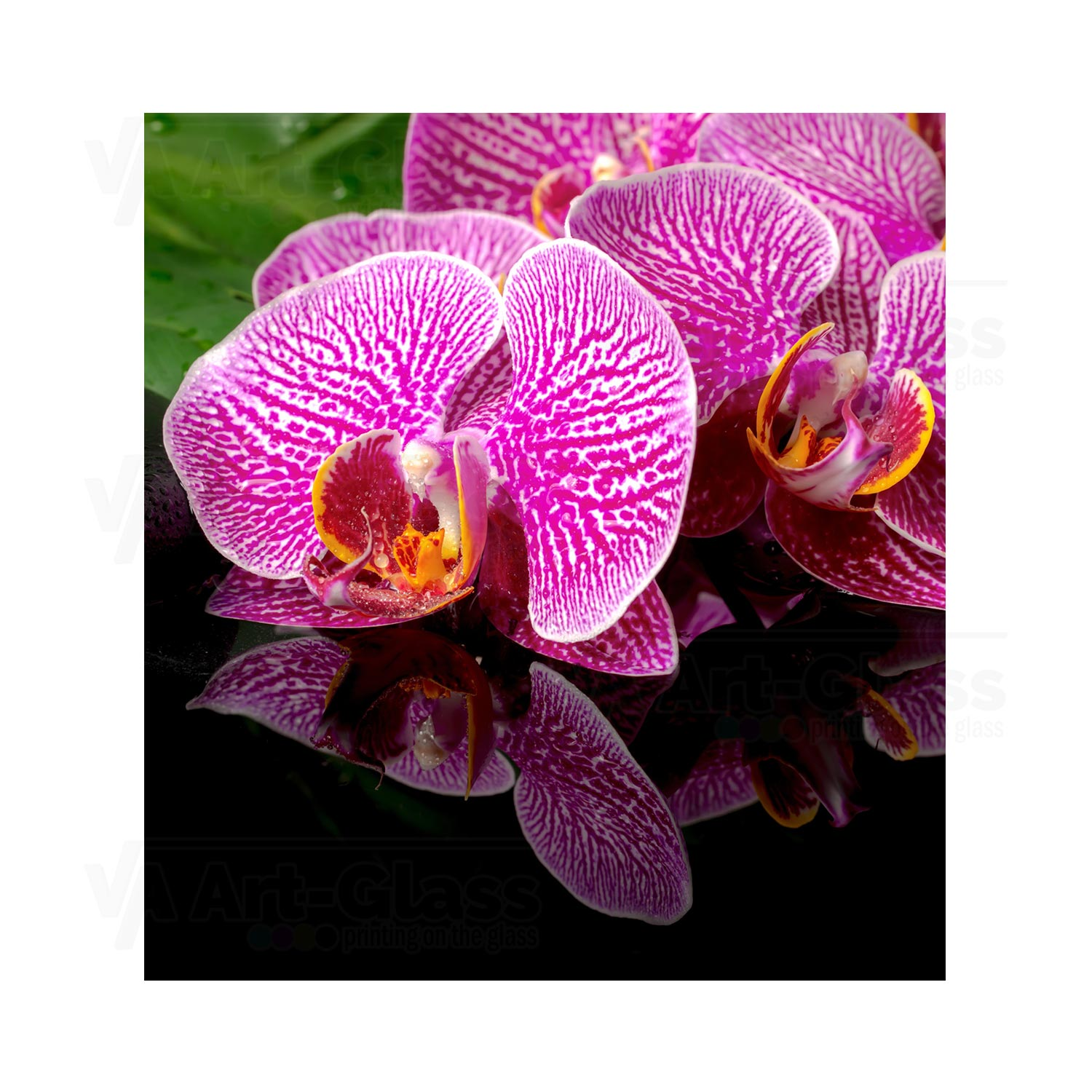 55cm Diameter Adjustable Height 60 75 Cm Coffee Table: Splashback With A Pink Orchid Flower ANY SIZE